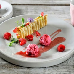 Raspberry yogurt ice cream | Philips Chef Recipes